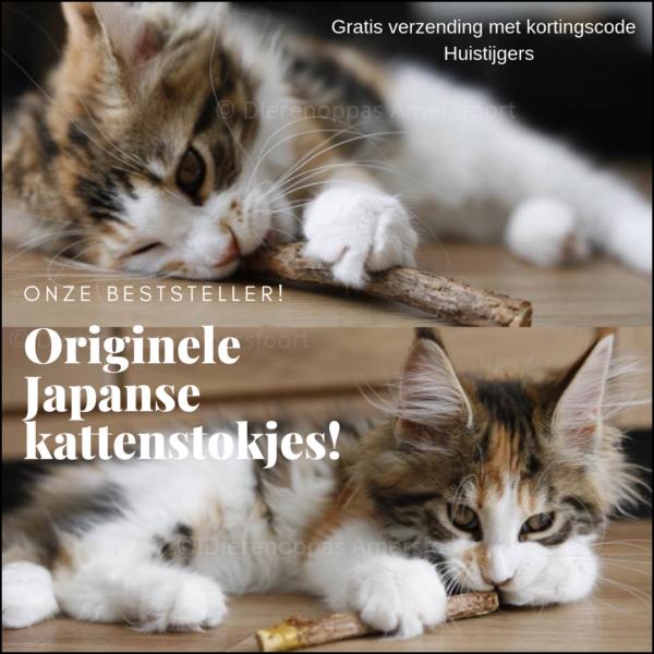 Japanse kattenstokjes kattensticks sticks katten matatabi