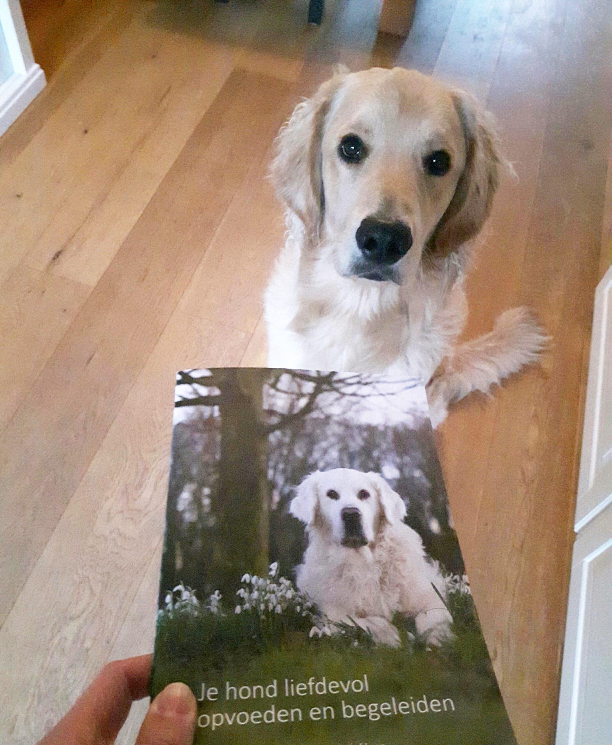 Beste informatie boek opvoeding honden opvoedboek puppy handleiding puppypakket liefdevol opvoeden en begeleiden turid rugaas
