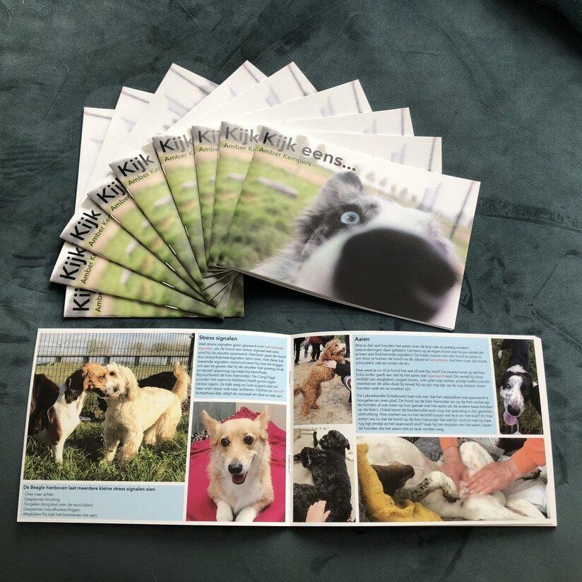Boek kijk eens van Amber Kempers lichaamstaal observatie hond hondenlichaamstaal turid rugaas
