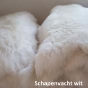 Mouflon Moeflon schapenvacht hondenmand hond puppy Sheepskin dog aanbieding vacht schaap wit