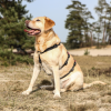 Anti ontsnap tuig hond buitenland escape-proof