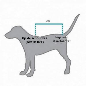 Badjas aanmeten voor hond