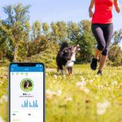 Tractive GPS tracker systeem voor honden halsband volgsysteem abonnement met app