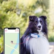 Tractive GPS tracker systeem voor honden halsband volgsysteem abonnement smartphone