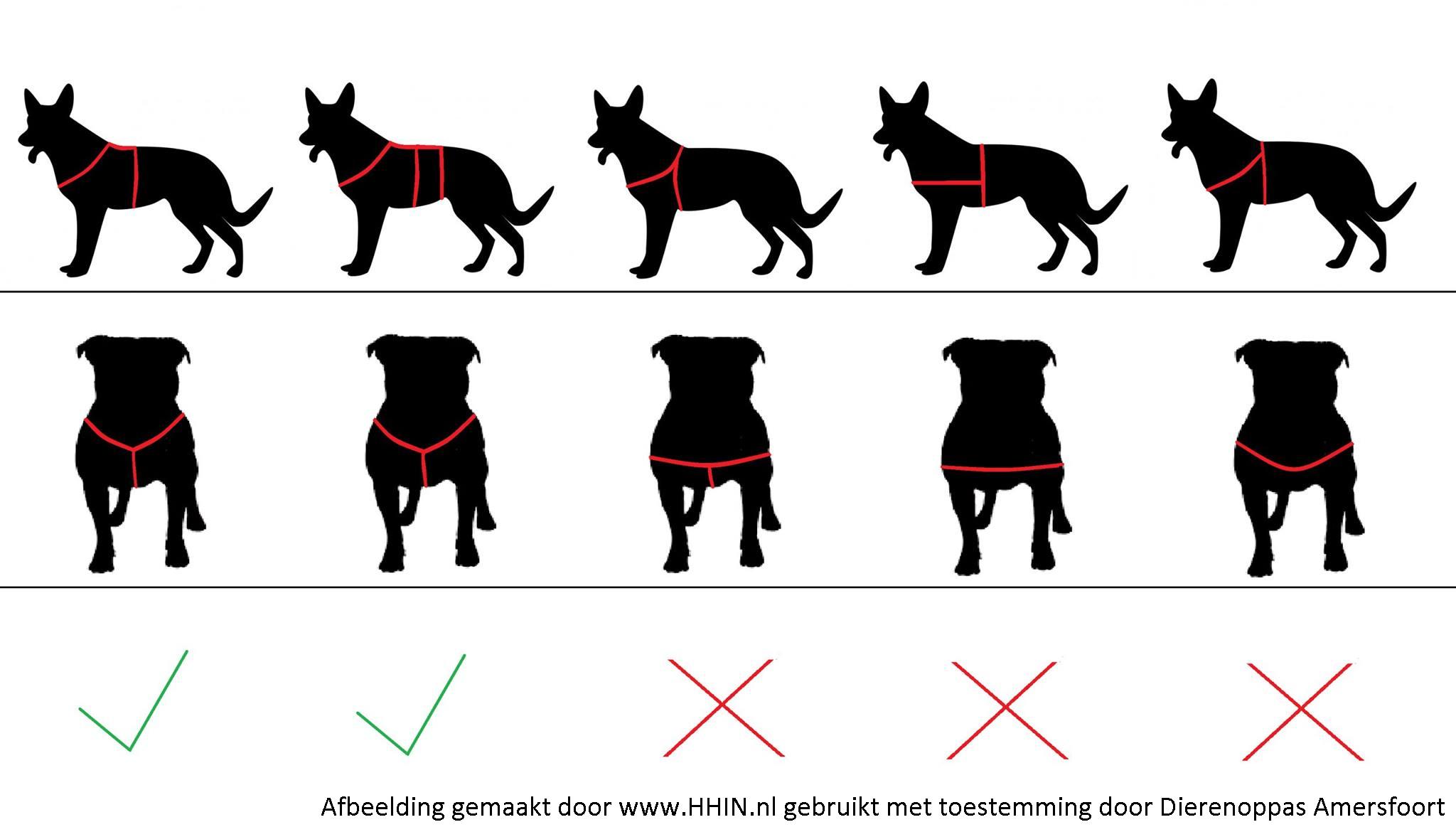 Ervaringen reviews verkooppunten AnnyX tuigje hond Anny-X