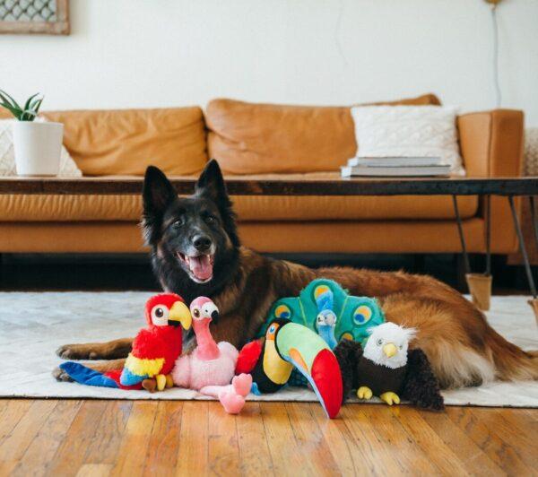 Play hondenspeelgoed knuffel Arend, Papegaai, flamingo, pauw, toekan2