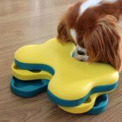 Nina Ottosson hersenwerk hersenwerkje denkspel hond honden Dog Tornado