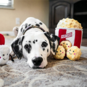 Zippypaws Zippy paws Popcorn knuffel hond honden
