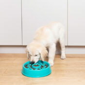 Zippypaws zippy paws hond speelgoed anti schokbak voerbak honden donut