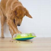 Nina Ottosson hersenwerk hersenwerkje denkspel hond honden Wobbl Bowl