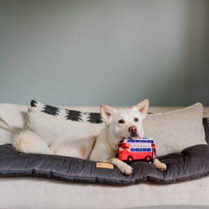 Play hondenspeelgoed knuffel Engelse dubbeldekker bus, Amerikaanse taxi, boot