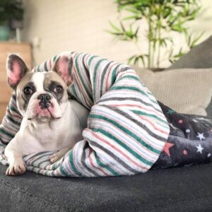 Zachte stevige hondenslaapzak honden slaapzak hond klein middel extra groot sleepingbag dog fleece