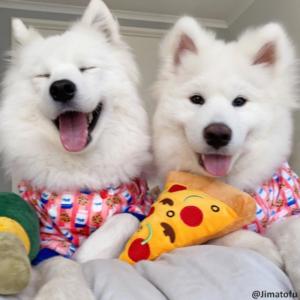 FuzzYard Fuzz Yard hondenspeelgoed knuffels stevig sterk hondenknuffel hond puppy